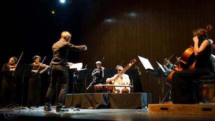 Purcell Room, Southbank Centre